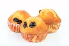 De rozijn van de muffin royalty-vrije stock foto's