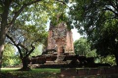 De ruïnepagode van Prang Srithep en voorgrond groene boom in archeologische plaats van de oude stad van Srithep in Petchaboon, Th Stock Afbeeldingen