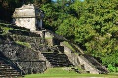 De Ruïnes Chiapas Mexico van Weergevenpalenque royalty-vrije stock foto's