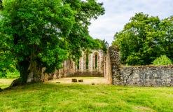 De ruïnes van de Abdij van Waverley stock afbeeldingen