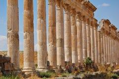 De ruïnes van Aphamia, Syrië Royalty-vrije Stock Foto's