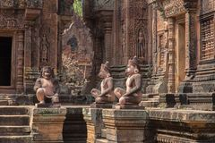 De ruïnes van Banteaysrei bij de historische ruïnes van Angkor Wat Stock Fotografie