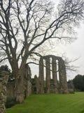 De ruïnes van de Croxdenabdij, diep in Staffordshire platteland royalty-vrije stock afbeelding