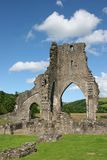 De Ruïnes van de abdij Stock Foto