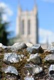 De ruïnes van de abdijmuur in nadruk met vage Catherdral Royalty-vrije Stock Foto's