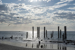 De Ruïnes van de het Strandpier van havenwillunga, Zuid-Australië Stock Foto
