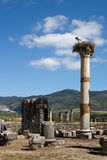 De ruïnes van de oude stad van Volubilis marokko stock afbeelding