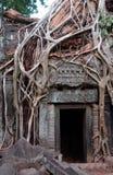 De ruïnes van de tempel, Angkor wat, Kambodja Royalty-vrije Stock Foto's