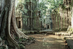 De ruïnes van de Tempel van Ta Prom stock fotografie