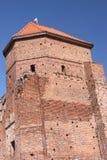 De ruïnes van een gotisch kasteel in Liw (Polen) Stock Fotografie