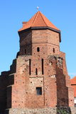 De ruïnes van een gotisch kasteel in Liw (Polen) Stock Foto