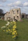 De ruïnes van Greyfriars Klooster, Suffolk Stock Foto's