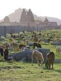 De ruïnes van Hampi Royalty-vrije Stock Fotografie