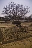 De ruïnes van heilige oude tempel Stock Afbeeldingen