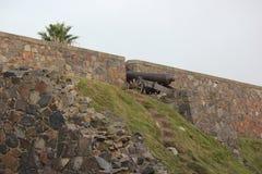 De ruïnes van het Fort van Colonia Royalty-vrije Stock Fotografie