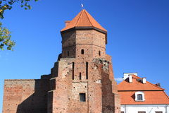 De ruïnes van het kasteel in Liw (Polen) Stock Fotografie