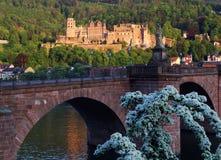 De ruïnes van het Kasteel van Heidelberg bij zonsondergang Stock Foto