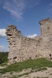 De ruïnes van het oude kasteel in de Oekraïne Stock Foto's