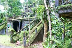 De Ruïnes van het Paronellapark in Queensland Australië Royalty-vrije Stock Fotografie
