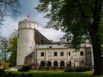 De ruïnes van medival oud kasteel in Polen, Przemysl, Polen Royalty-vrije Stock Afbeelding
