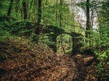 De ruïnes van de muur in het bos, de muur met de ingangspoort aan het bezit stock afbeelding