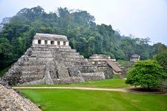De ruïnes van Palenque Stock Afbeeldingen