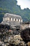 De ruïnes van Palenque Stock Fotografie