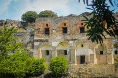 De ruïnes van Pompei - de lentetijd, bloeiende struiken Stock Afbeeldingen