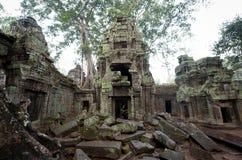 De Ruïnes van Ta Prohm Stock Afbeeldingen