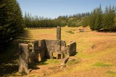 De Ruïnes van Watermill Stock Foto