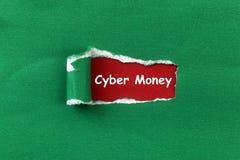 De rubriek van het Cybergeld royalty-vrije stock fotografie