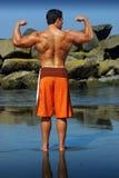 De rug van de bodybuilder Stock Foto's