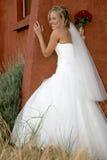 De Rug van de bruid royalty-vrije stock afbeeldingen