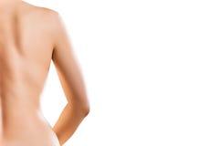 De rug van het lichaam Stock Afbeeldingen