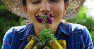 De Ruikende Bloem van de vrouw in Tuin stock footage