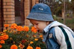 De ruikende bloemen van de jongen stock fotografie