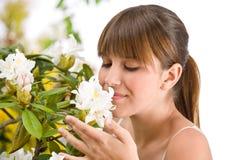 De ruikende bloesem van de vrouw van de bloem van de Rododendron Stock Foto