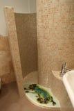 De ruimte van de douche stock foto's
