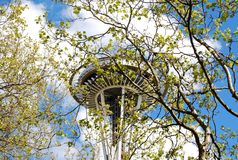 De RuimtedieNaald van Seattle door Bomen wordt gezien Royalty-vrije Stock Foto's