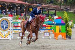 De ruiter en het paard bij tonen het springen Stock Foto