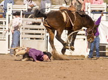 De Ruiter van Bucking Bronc van de rodeo Stock Fotografie