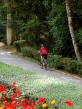 De ruiter van de fiets Stock Foto's