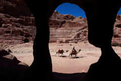 De ruiter van de kameel in Petra stock fotografie