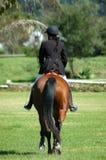 De ruiter van het paard Stock Foto