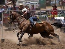 De Ruiter van het paard Stock Afbeeldingen
