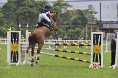 2015 de ruiterspelen van Taiwan (het springen) Stock Foto's