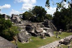 De ruïnes van Tikal Stock Foto's