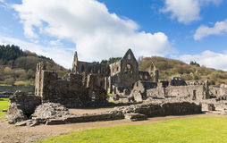 De ruïnes van Tinternabbey chepstow wales het UK Royalty-vrije Stock Fotografie