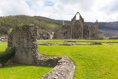 De ruïnes van Tinternabbey chepstow wales het UK van Cisterciënzer klooster Royalty-vrije Stock Afbeeldingen