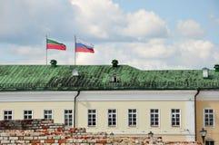 De Russische en nationale vlaggen van Tatarstan Stock Foto's